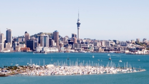 Auckland Wallpaper