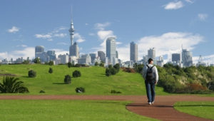 Auckland For Desktop