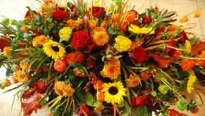 Autumn Flower Hd Wallpaper
