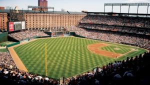 Baltimore Orioles High Quality Wallpapers