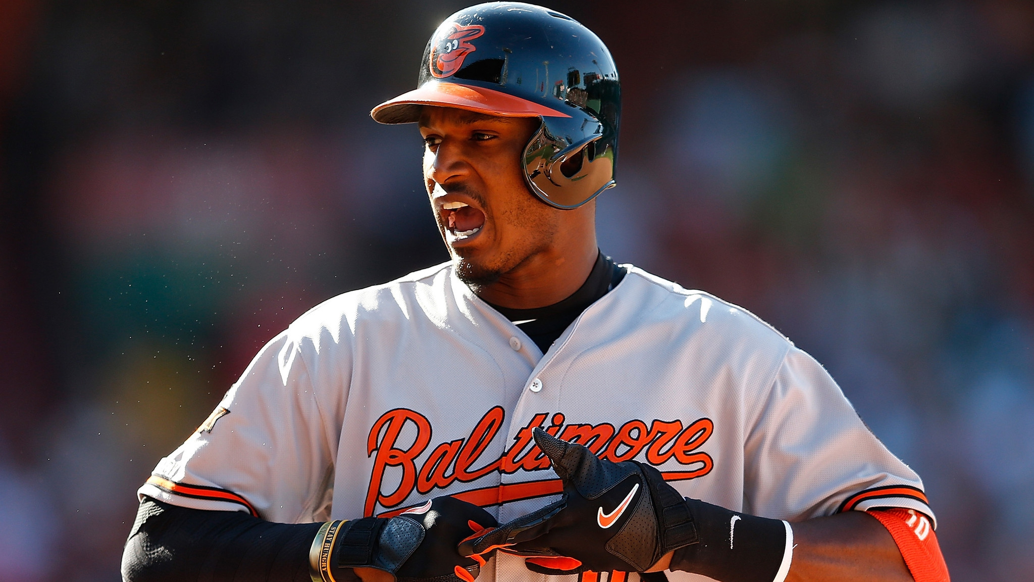 Baltimore Orioles Pictures