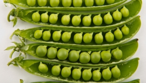 Best Images Of Peas
