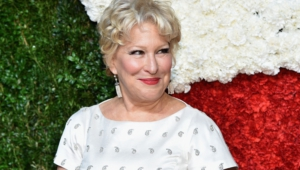 Bette Midler Computer Wallpaper