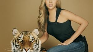 Beyonce Knowles Hd Desktop