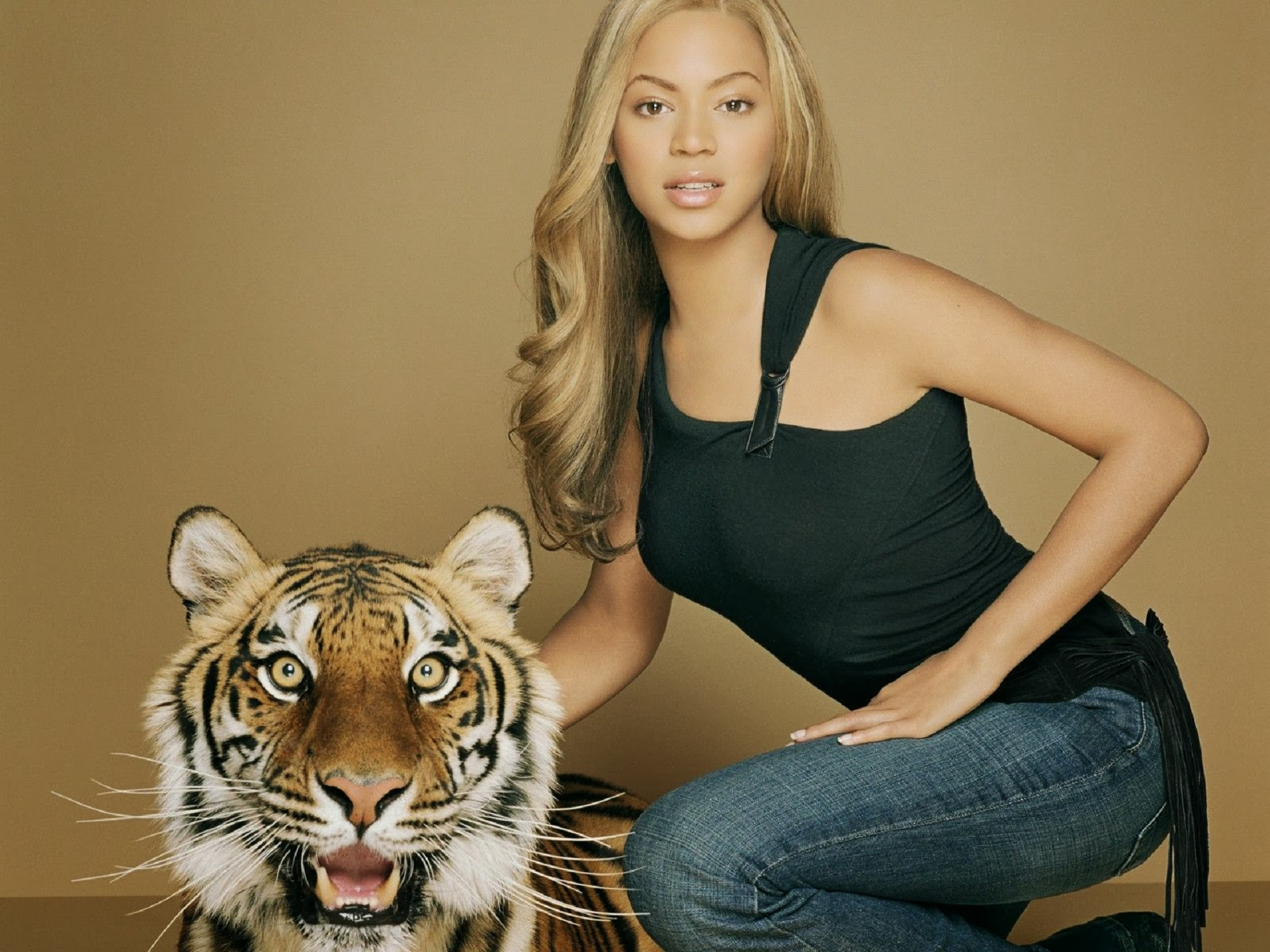 Beyonce Knowles Hd Desktop