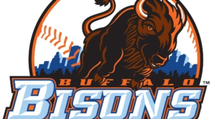 Buffalo Bisons Hd Wallpaper
