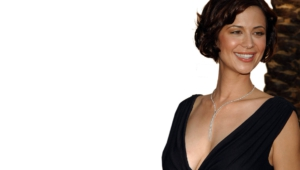 Catherine Bell Hd Background