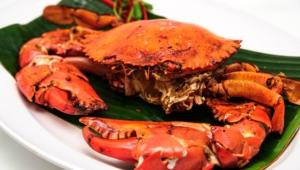 Chili Crab Hd Desktop