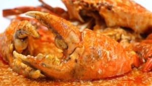 Chili Crab Photos