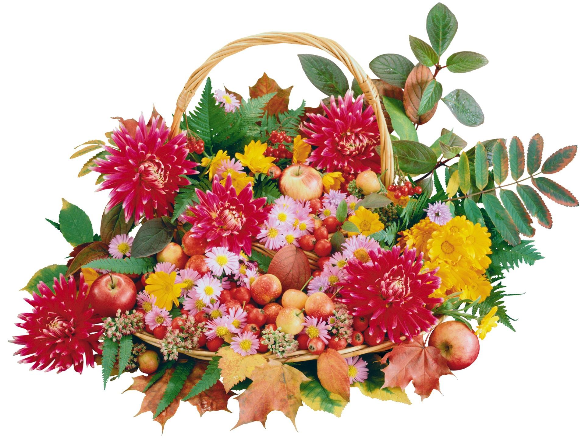 Flower Bouquet 4k