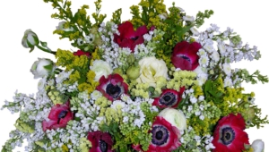 Flower Bouquet Pictures