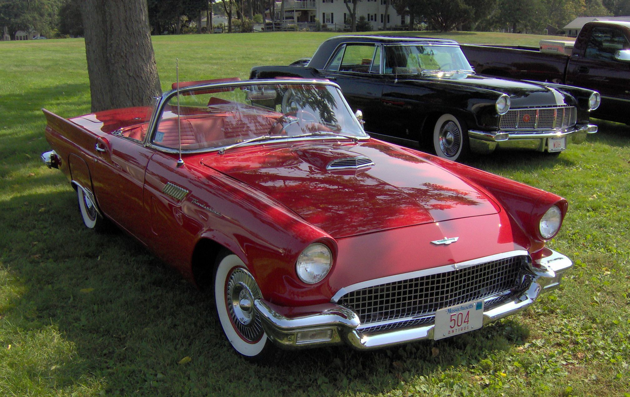 Ford Thunderbird Images