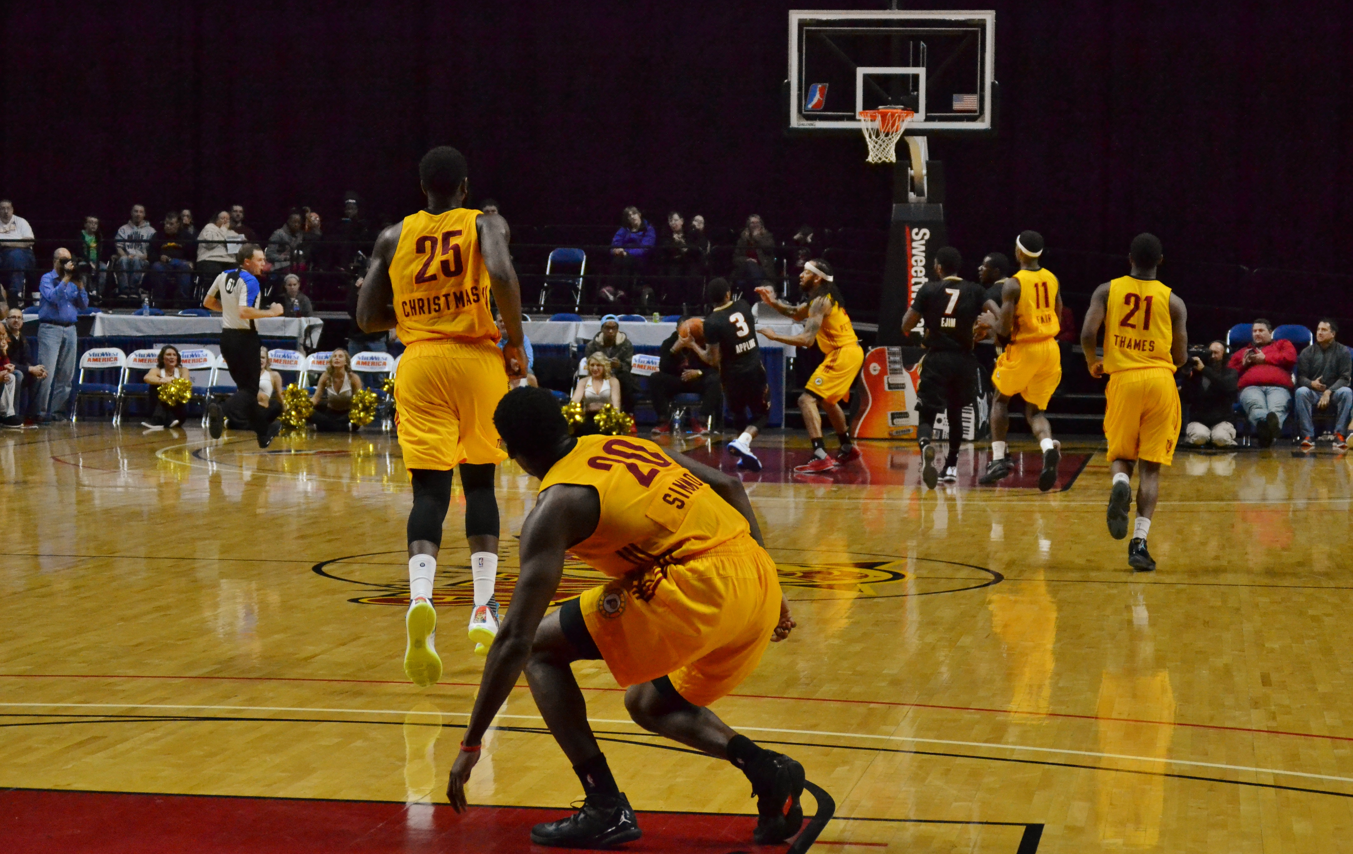 Fort Wayne Mad Ants High Definition Wallpapers 2