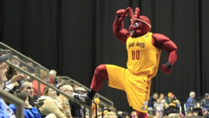 Fort Wayne Mad Ants Wallpaper