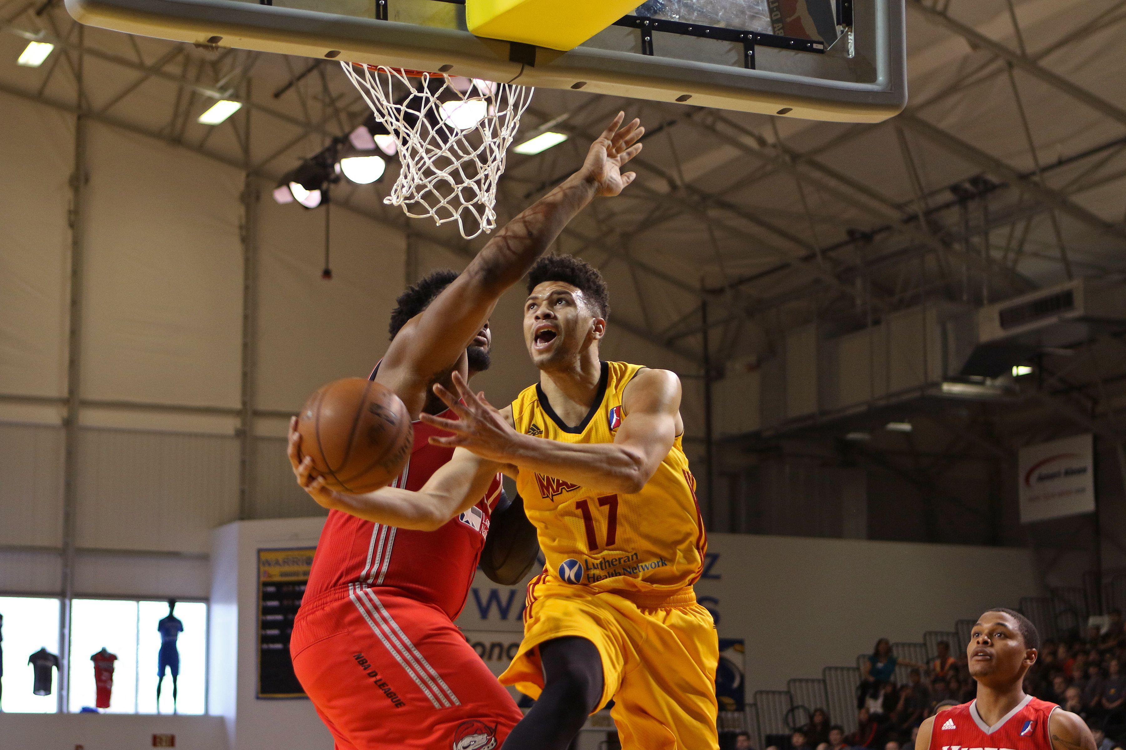 Fort Wayne Mad Ants Widescreen