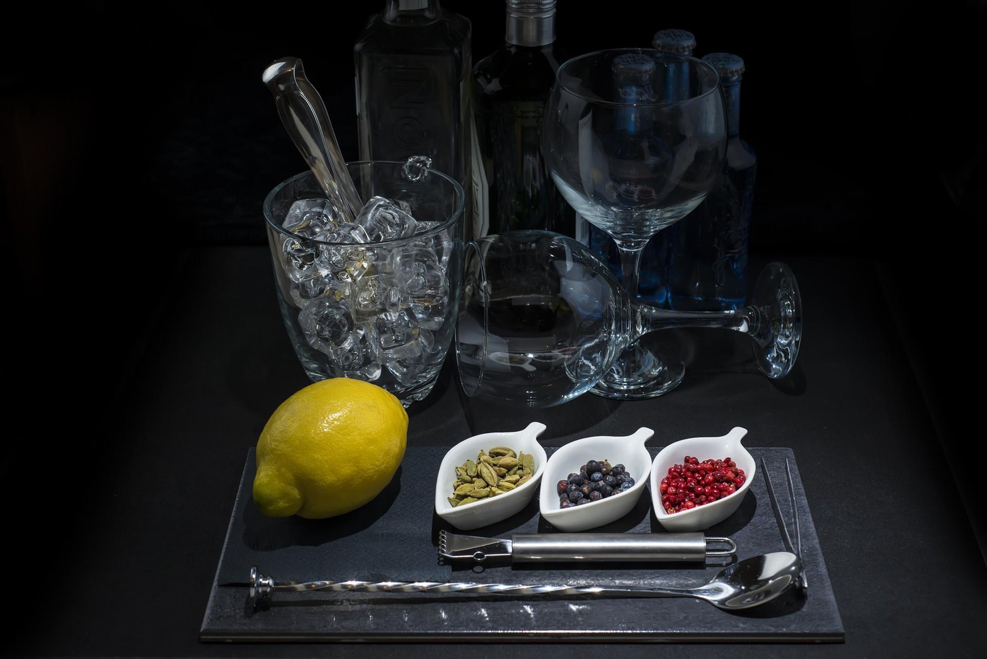 Gin And Tonic Photos