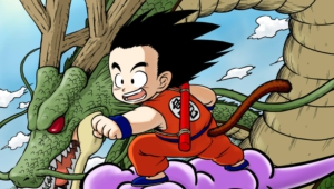 Gokuu Son High Definition Wallpapers