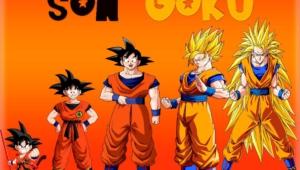 Gokuu Son Photos