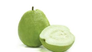 Guava Photos