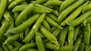 Images Of Peas