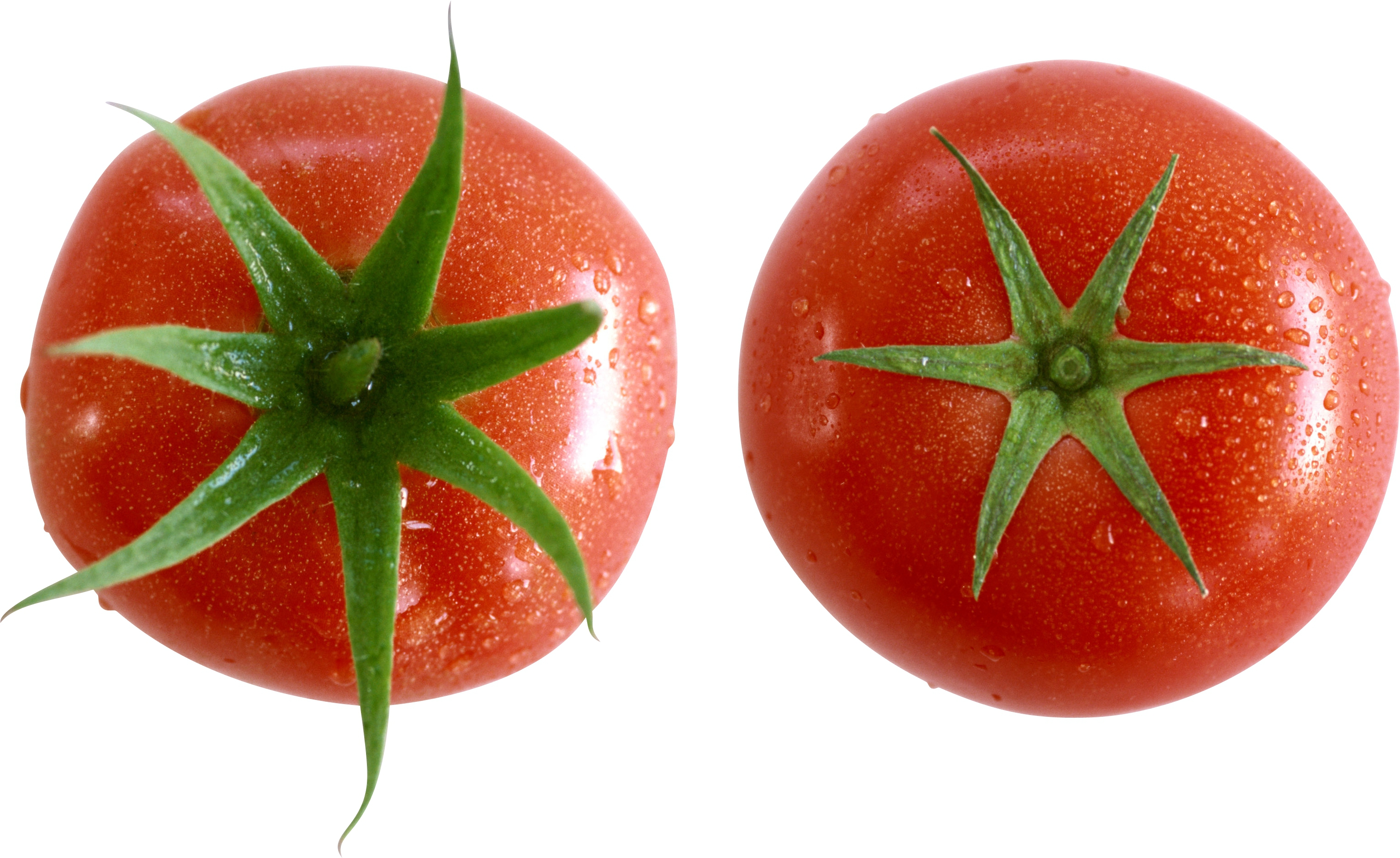 Images Of Tomato