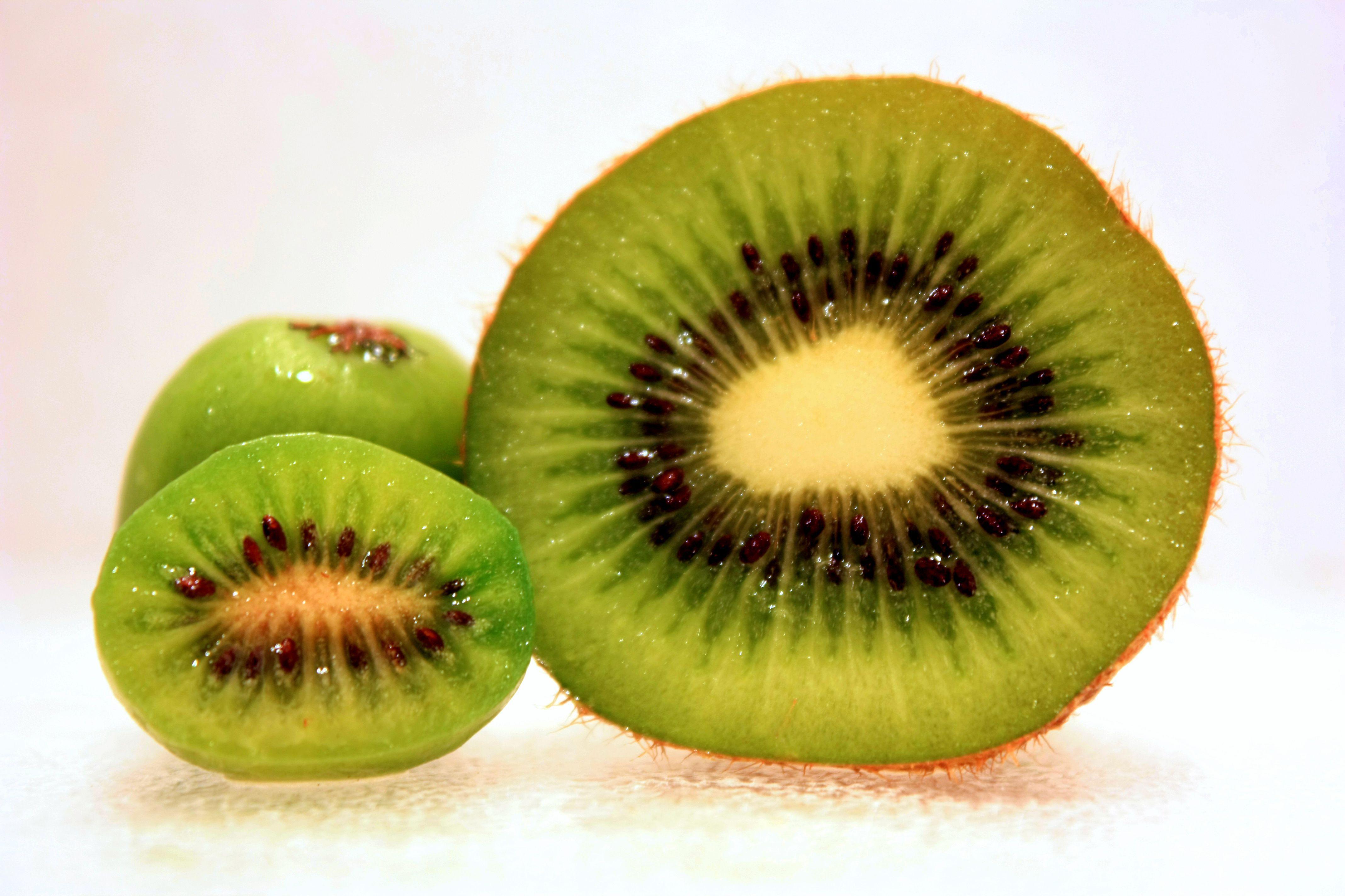 Kiwi Photos