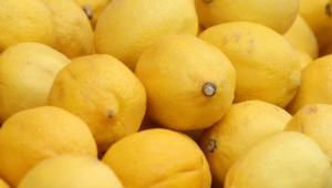 Lemon Computer Wallpaper