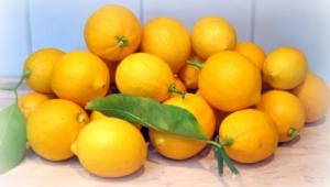 Lemon Hd Background
