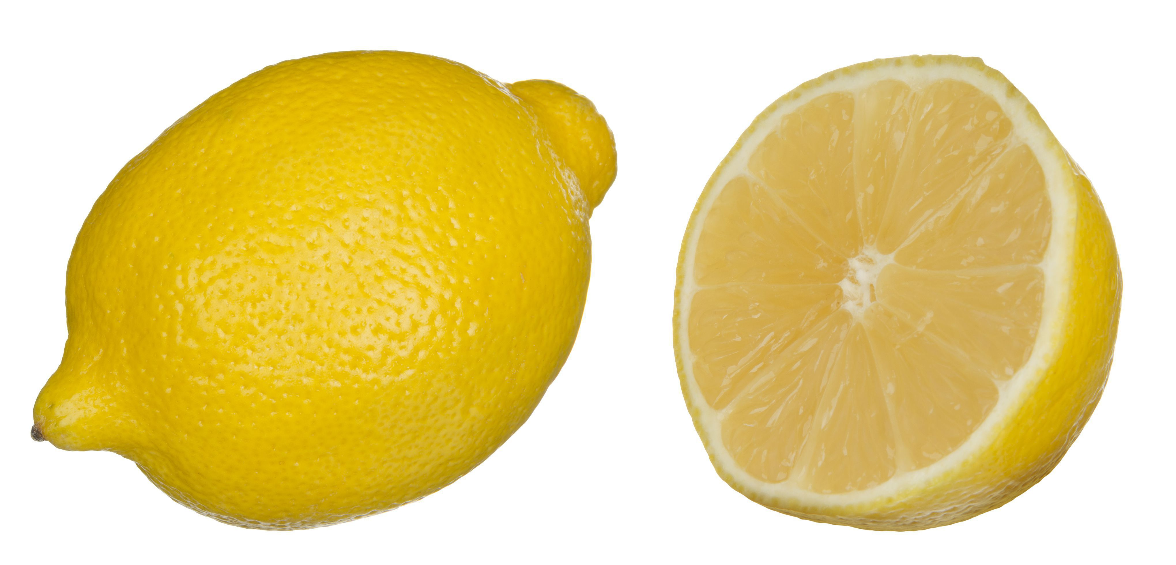 Lemon Hd Wallpaper