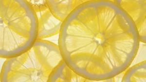 Lemon Wallpaper For Laptop
