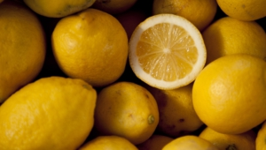 Lemon For Desktop