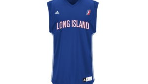 Long Island Nets Widescreen