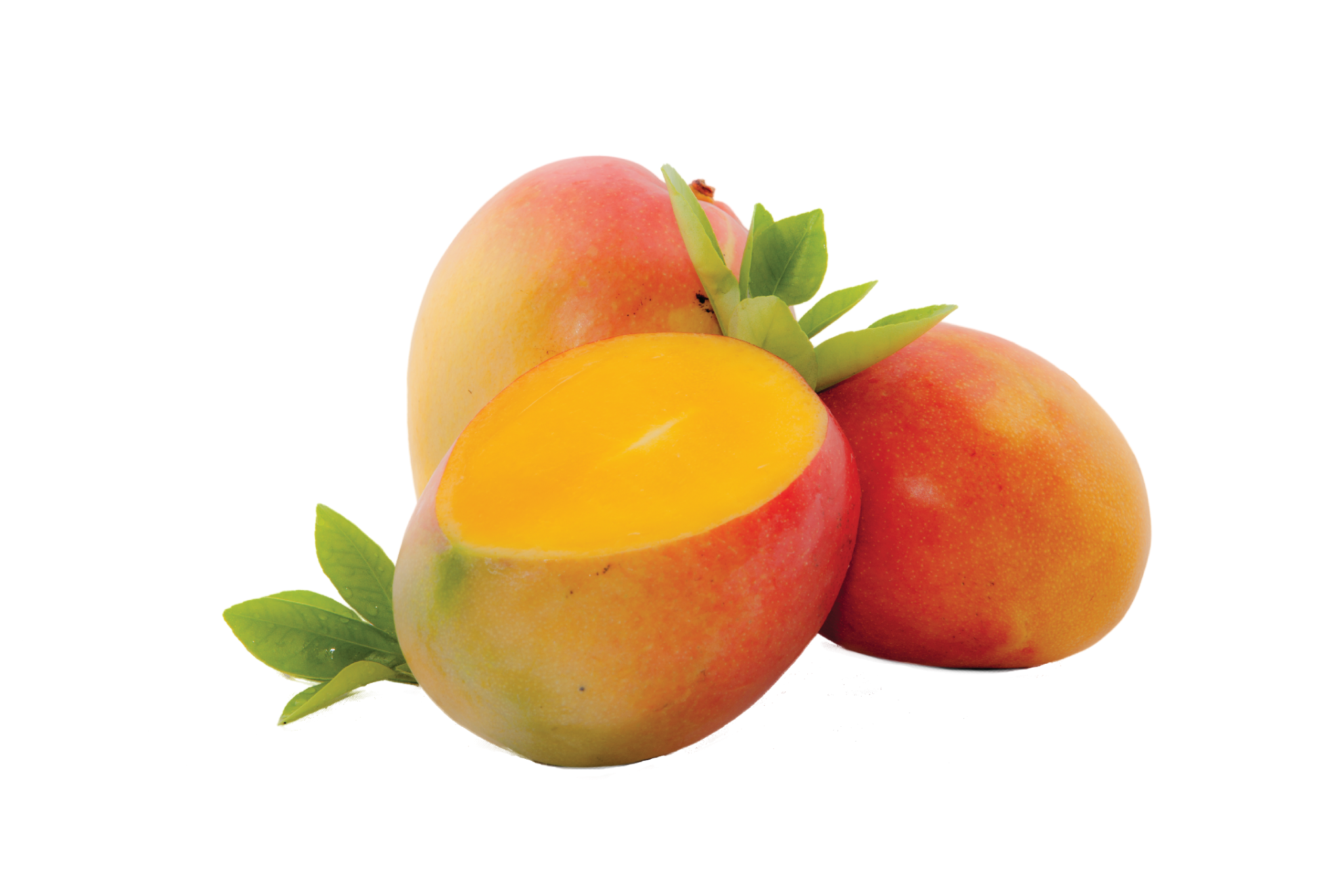 Mango High Quality Wallpapers