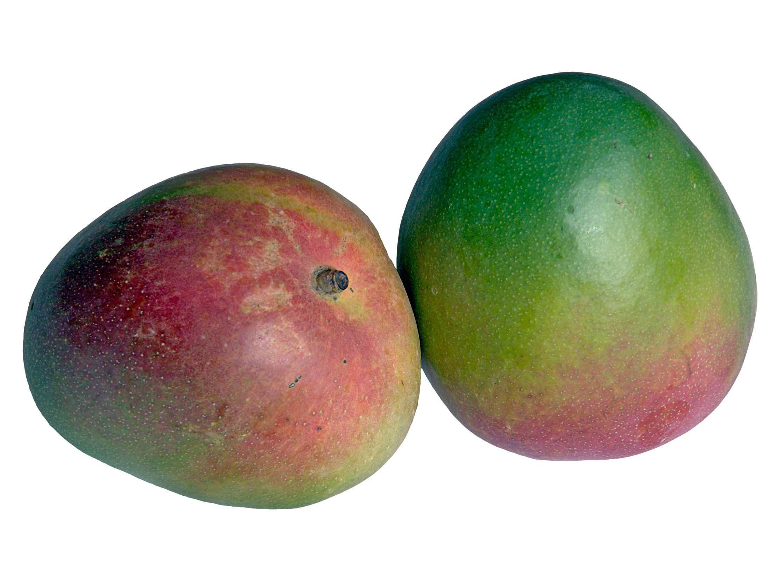 Mango For Desktop