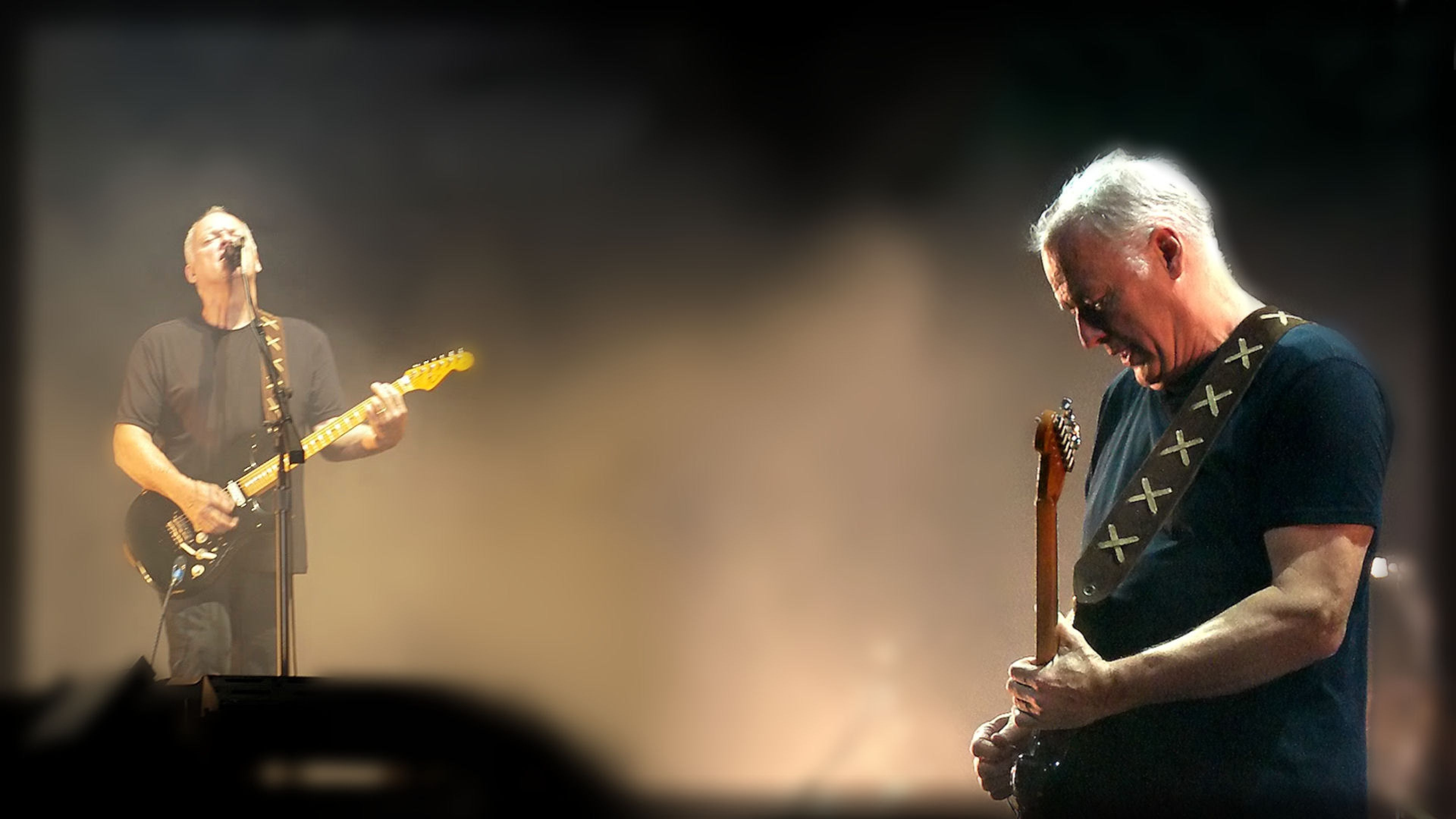 Mark Knopfler Photos