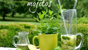 Mojito Photos