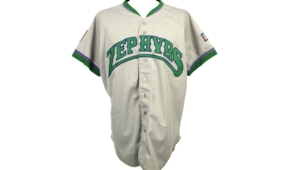 New Orleans Zephyrs Widescreen