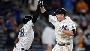 New York Yankees High Definition