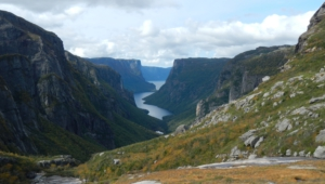 Newfoundland Photos