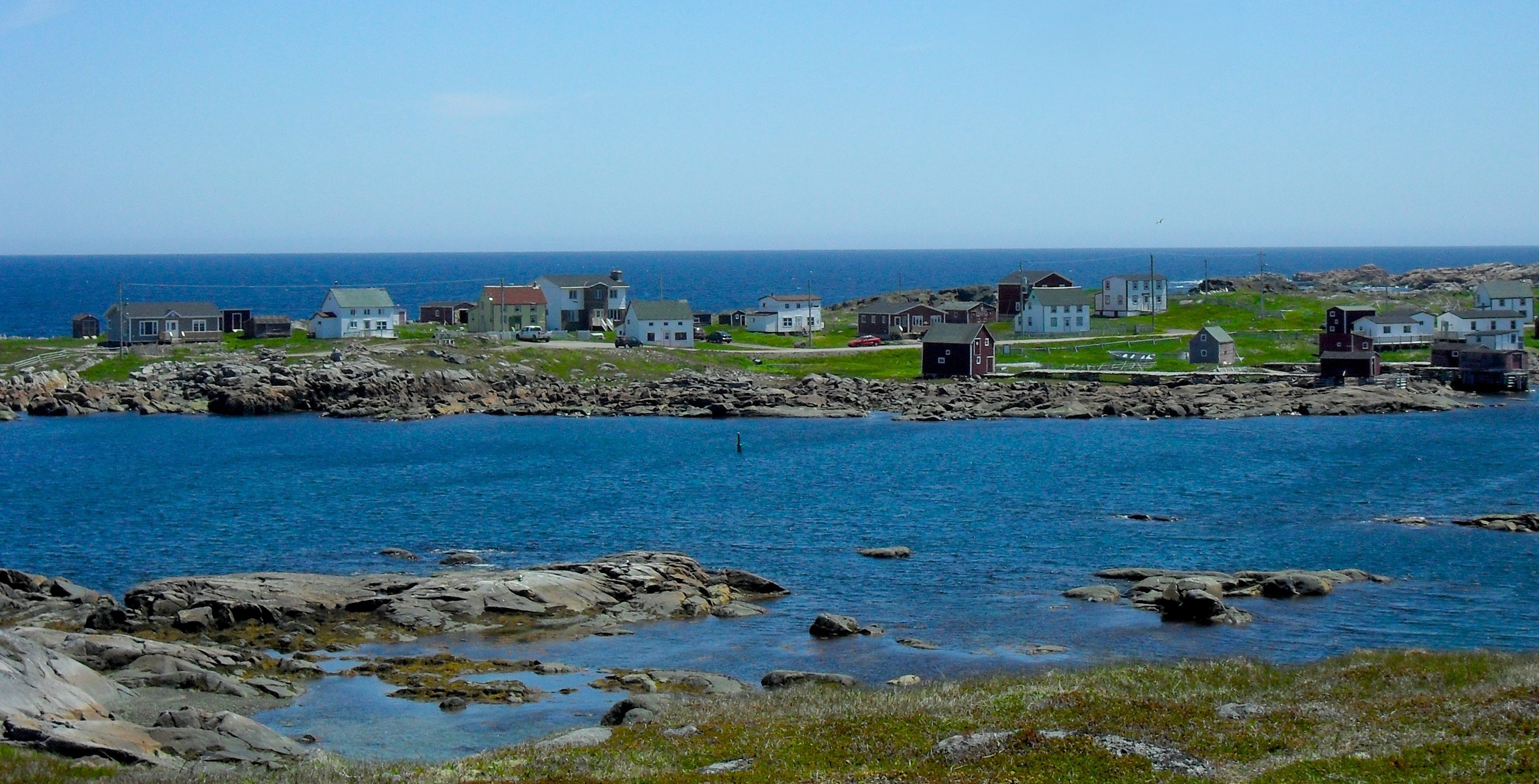 Newfoundland Wallpapers Hd