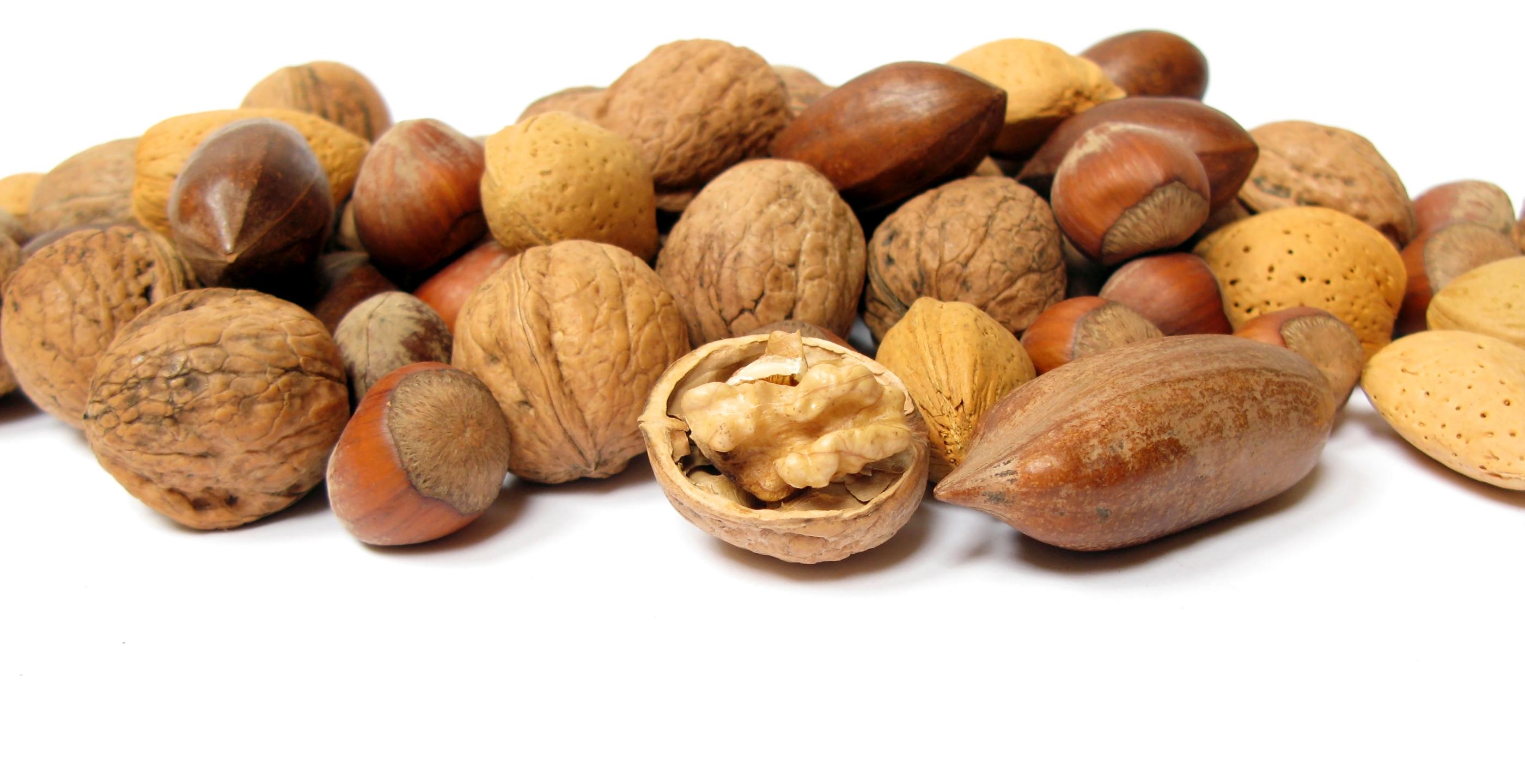 Nuts Computer Wallpaper