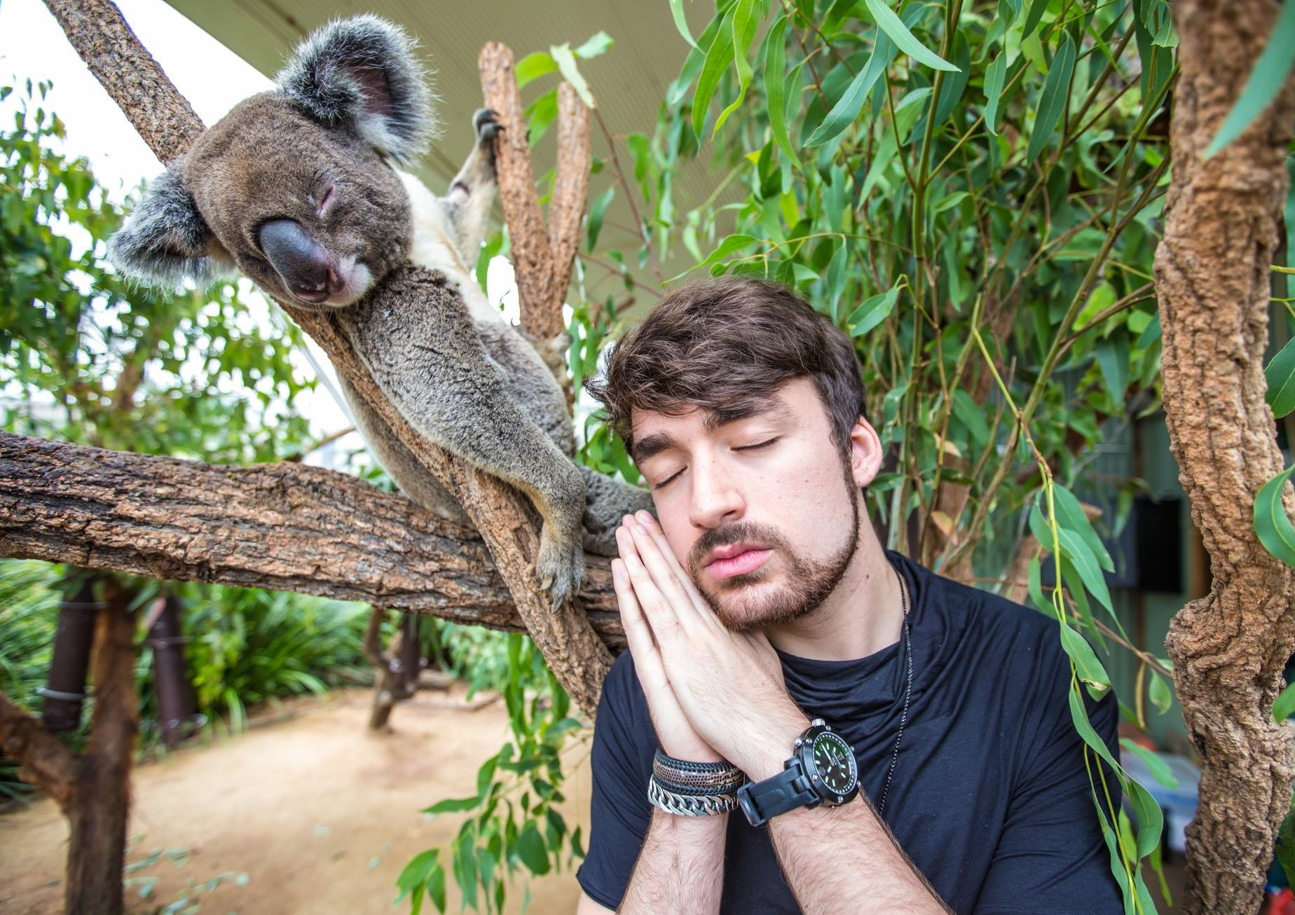 Oliver Heldens Background
