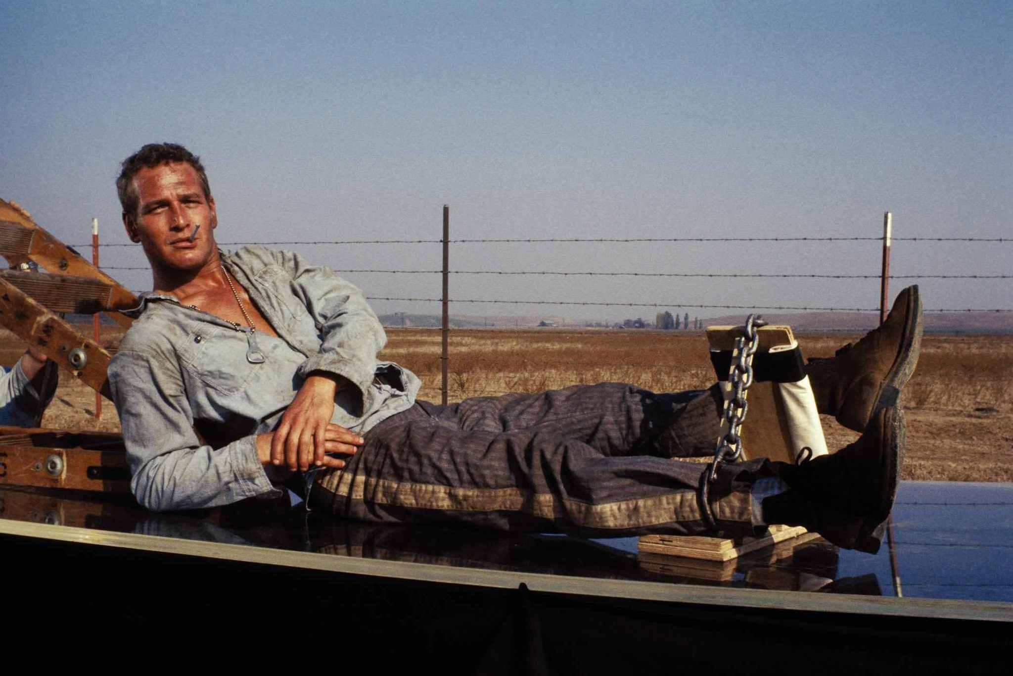 Paul Newman Desktop