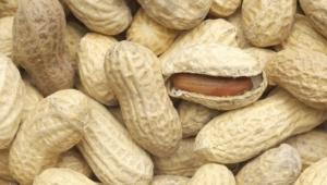 Peanuts Computer Wallpaper