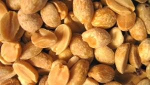 Peanuts Wallpapers