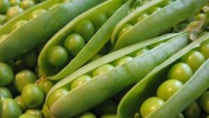 Peas Desktop