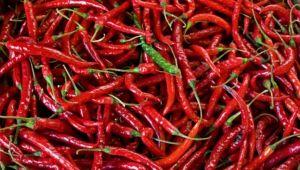 Peppers Download Free Backgrounds Hd