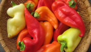 Peppers Full Hd