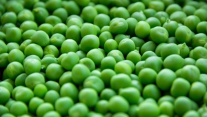 Photos Of Peas