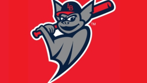 Pictures Of Louisville Bats